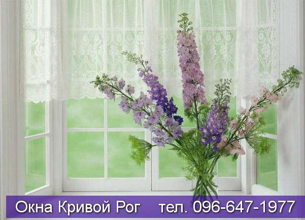 dizayn okna krivoy rog (184)