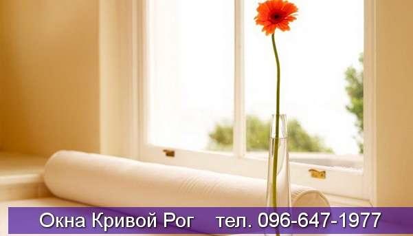 dizayn okna krivoy rog (71)