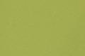 Зелёная ткань для рулонных штор Berlin 0842