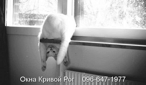 okna krivoy rog (11)