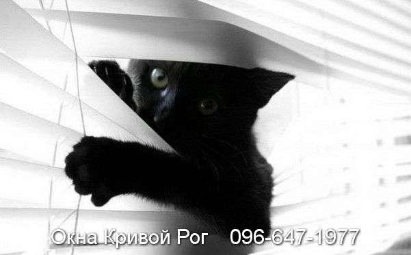 okna krivoy rog (21)