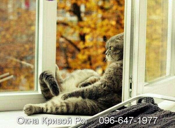 okna krivoy rog (3)