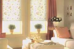 Тканевые жалюзи салатового цвета на белом фоне